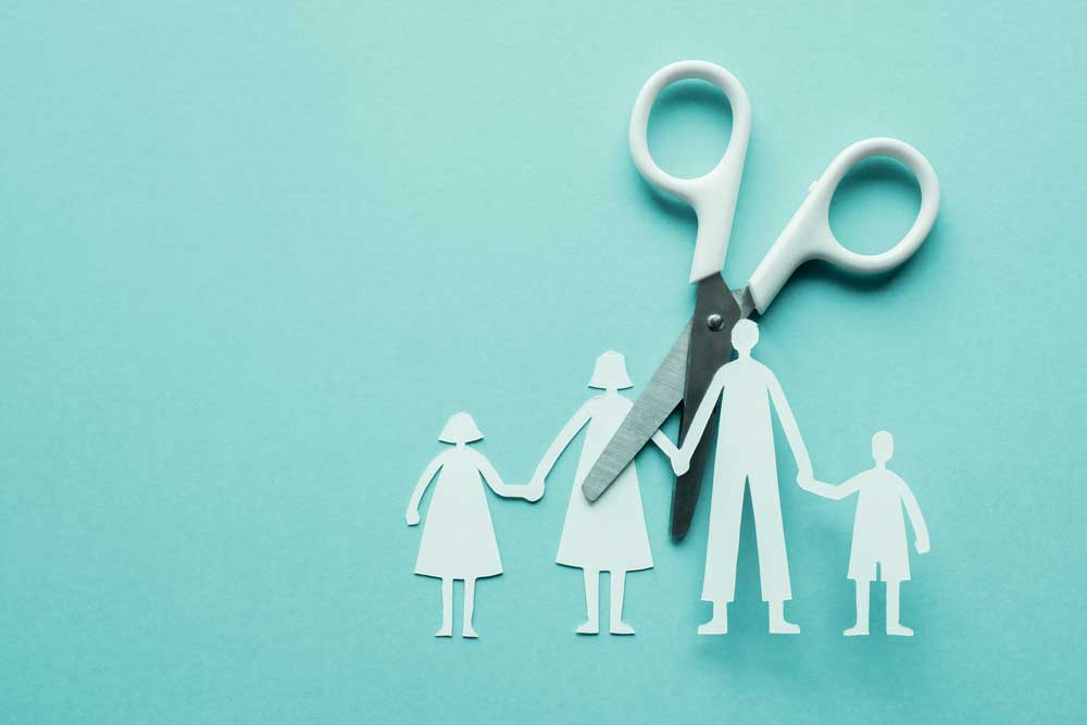 divorce family cut in half